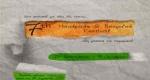 Παράταση υποβολής προτάσεων για το 7ο Handmade and Recucled Theater Festival - Fabrica Athens