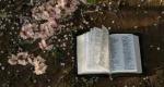Παγκόσμια Ημέρα Ποίησης: 6 συντάκτες επιλέγουν το αγαπημένο τους ποίημα