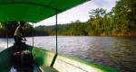 «Αμαζόνιος στο έλεος του Μπολσονάρο», γράφει ο Νότης Μαυρουδής